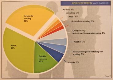 Afbeeldingsresultaat voor eten en kanker