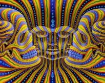 Afbeeldingsresultaat voor ayahuasca